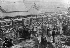 Grahamstown, 3 September 1879. Opening of the Alicedale - Grahamstown line. Large crowd welcoming...
