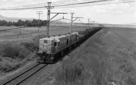 Volksrust district, 1964. SAR Class 1-DE or 31-000 with goods train.
