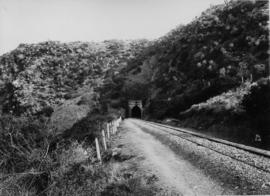 Alicedale, 1895. Tunnel on the Grahamstown line. (EH Short)