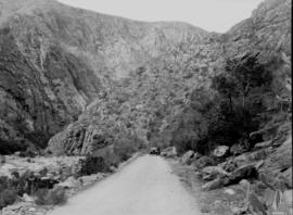 Oudtshoorn district. Mountain pass near Cango caves.
