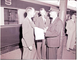 """1946. Blue train ticket examiner."""
