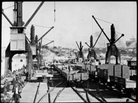 Port Elizabeth. Goods wagons and wharf cranes in harbour.