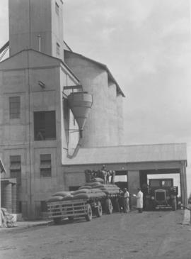 Ladybrand district, 1936. Thornycroft truck unloading maize at Westminster silo.