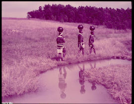 Melmoth district. Zulu girls fetching water at Nkandla.