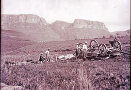 Drakensberg. Men fixing overturned oxwagon, mountain in background.
