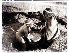 Transkei, 1940. Removing mealies from natural storage bin.