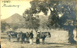 Rustenburg district. Well-dressed persons with cart drawn by four donkeys.