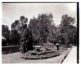 """Aliwal North, 1939. Pool and garden at hot springs resort."""