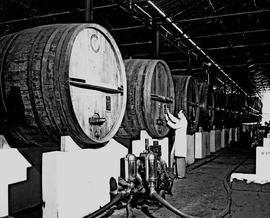 Paarl, 1945. KWV distillery. Rows of wine vats.