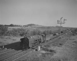 Brandfort district, 1957. Goods train.