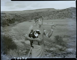 Transkei, 1954. Herder smoking pipe while holding lamb.