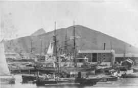 Cape Town, 1870. Table Bay Harbour with sailing vessels.