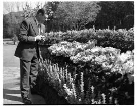 Circa 1948. Photographer admiring flower bed.