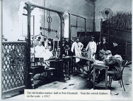 Port Elizabeth, circa 1912. Interior of Feather Market hall with feathers being weighed.