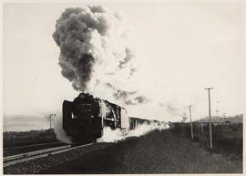 Kroonstad district, 1957. SAR Class 15F with goods train.