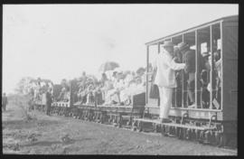 Roadrail train with passengers.