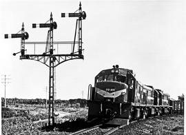 Kirkwood district, 1968. SAR Class 33-000 No 33-410 with goods train near Addo.
