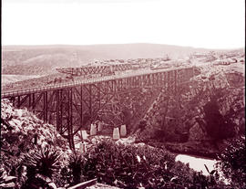 """Mossel Bay district, 1930. Construction of the Gourits River bridge."""
