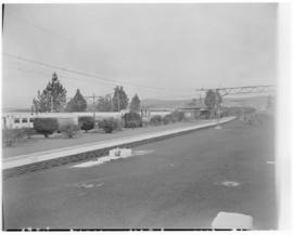 Lions River, 17 March 1947. Station garden.