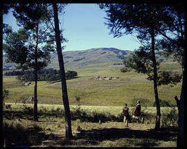 Zululand, 1961. Traditional huts in the distance.