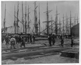 Durban, circa 1901. Handling rails at harbour with sailing vessels in the background. (Durban Har...