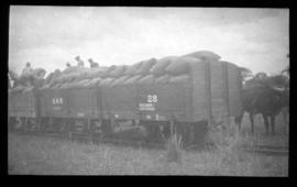 SAR type 8-E-2 No 28 goods wagons loaded with bags.