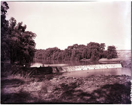 Standerton, 1951. Weir in the Vaal River.
