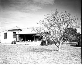 """Nelspruit district, 1938. Government experimental farm."""