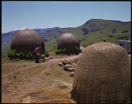 Traditional Zulu huts.