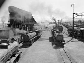 Johannesburg, 1942. Locomotives in Braamfontein yard, SAR Classes 16C, 4AR, 12A and 15F.
