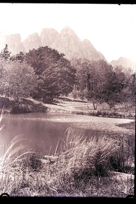 Stellenbosch district. Trout hatchery at Jonkershoek.