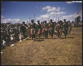 Eastern Transvaal. Traditionally dressed men marching with weapons.