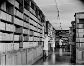 Pretoria, 1946. Interior of library at Onderstepoort.