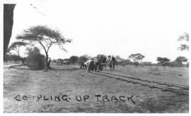 Naboomspruit district, circa 1924. Tracklaying gang coupling up track sections. (Album on Nabooms...