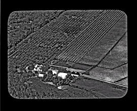 Aerial view of Cape Dutch homestead amidst fruit orchards.