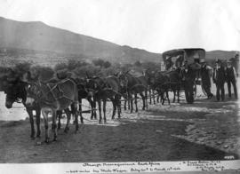 Namaqualand, 1906. Railway staff on 64 mile mule wagon trip from 20 February to March 10.
