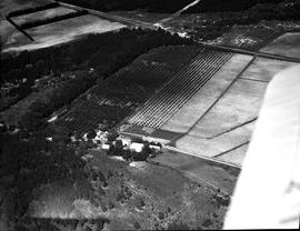 De Doorns, 1935. Areal view of fruit farm in the Hex River valley.