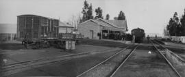 Sterkstroom, 1895. Passenger train in station with large crowd on the platform. (EH Short)