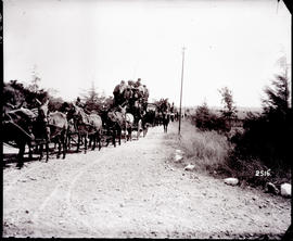 Bulawayo district, Zimbabwe. Horse-drawn coaches leaving hotel at Matopos.