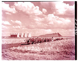 """Vereeniging, 1949. Klip River power station with ox wagon in the foreground."""