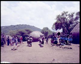 Tribal dancing for tourists in Zulu village.