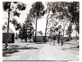 """Aliwal North, 1938. Tree-lined road with rondavels in the barckground."""