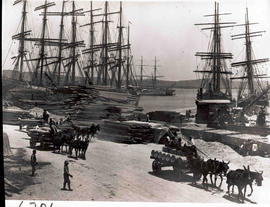 Durban. St Pauls Wharf and timber wharf with four sailships and three mule wagons in Durban Harbour.