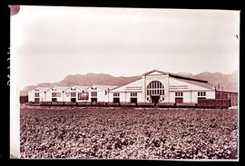 Paarl district, 1939. KWV wine cellar.