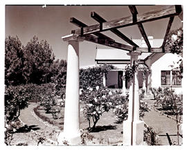 """Aliwal North, 1938. Residence and garden."""
