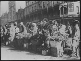 Cape Town. Flower sellers in Adderley Street.