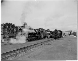 Queenstown, 6 March 1947. SAR Class 15AR locomotives leading the Royal Train. Pilot Train pulled ...