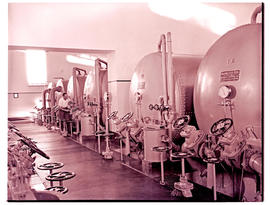 """Pretoria, 1947. Water treatment plant at power station."""