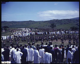 Tribal dancing at large Zulu gathering.