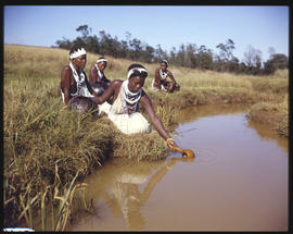 Zululand, 1961. Fetching water.